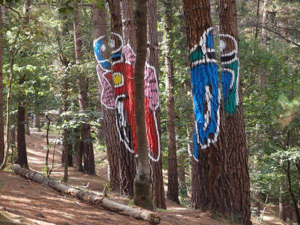 Resultado de imagen de bosque oma