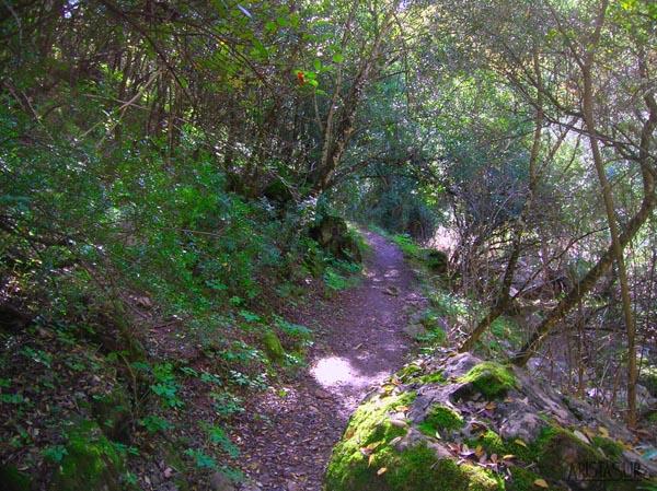 Paisajes de la Sierra Morena cordobesa